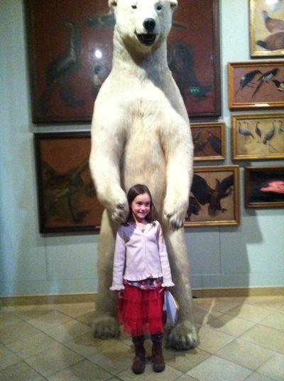 Alma à l'ours