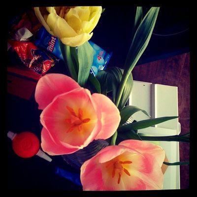 Roses et vertes