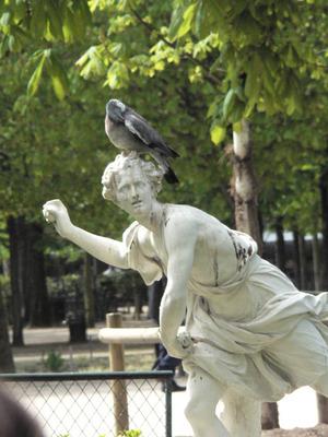 Ne_pas_finir_comme_une_statue_de_se