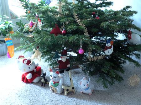 Pine_tree_1