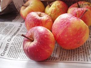 Pommes_1